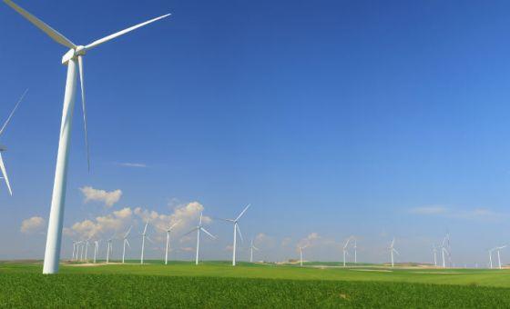 greenest companies