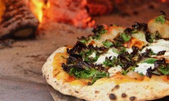 Best pizza ovens for homemade pizza