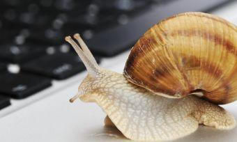 snail speed internet