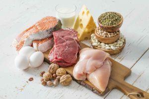 protein macronutrients