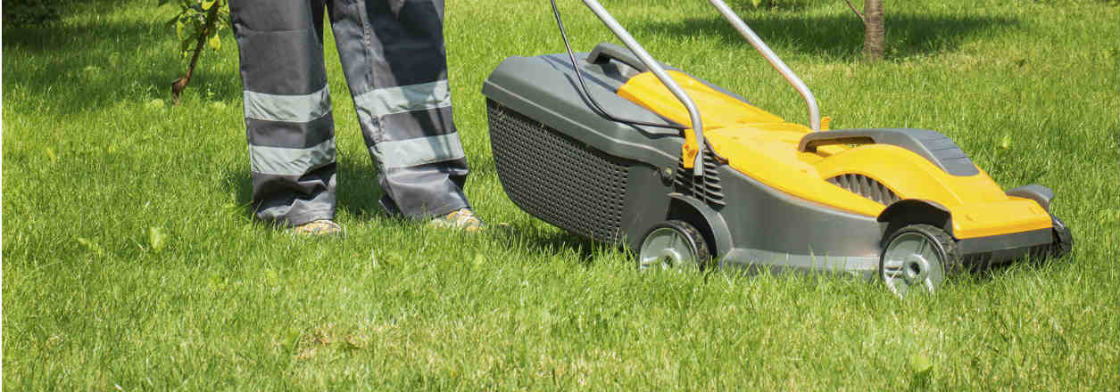 Ryobi Lawn Mowers Review Models Amp Prices Canstar Blue