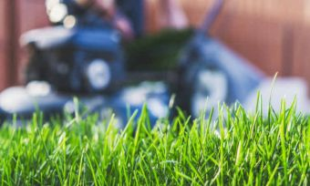 victa lawnmower