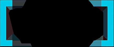 Vaya logo