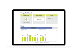 real time energy usage information