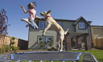 A girl and her dog jumping on a trampoline
