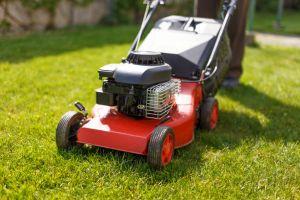Lawn Mowers - Power