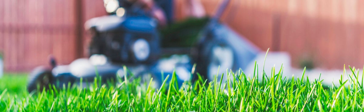 Victa Lawn Mowers Review Products Amp Prices Canstar Blue