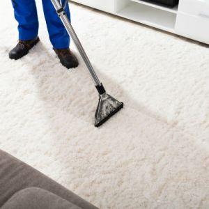Carpet Shampooer Carpet Cleaner