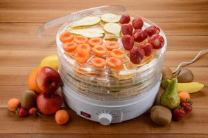 Which food dehydrator should you buy?