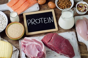 Examples of Protein