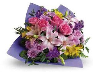 Petals Flower Delivery