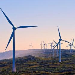 EneryAustralia Green Power Options