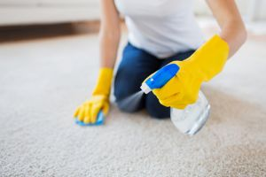 How to find a good carpet cleaner