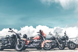 harley-davidsons-lined-up
