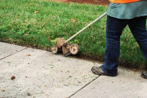 trim the lawn edge