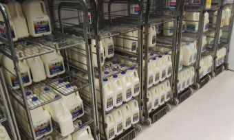 Coles milk in store.