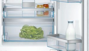 bosch vegetable crisper