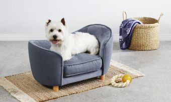 ALDI Small Pet Sofa fromPampered Pets Special Buys