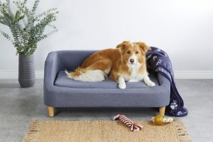 Large Pet Sofa ALDI