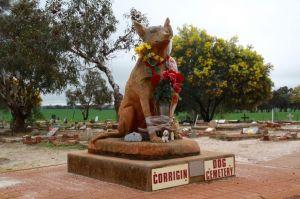 Corrigin Dog Cemetery