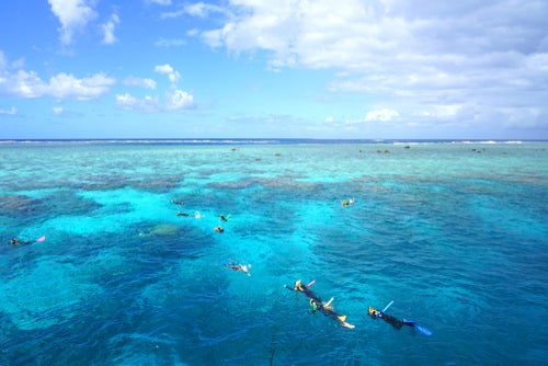 Tourists snorkeling in the Coral Sea on the Great Barrier Reef