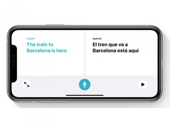 An iPhone 11 landscape in translation mode
