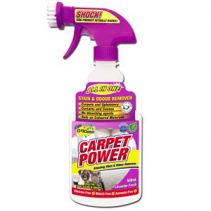OzKleen Carpet Power carpet cleaner