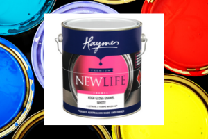 Haymes Paint best rated