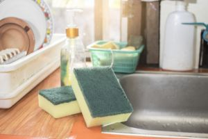kitchen sponge on sink