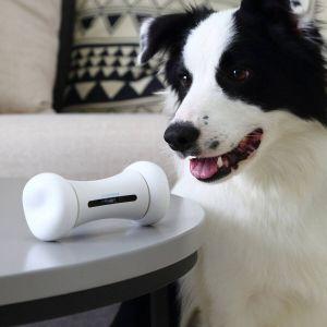 Cheerble 2499 Wickedbone Smart Interactive Dog Toy