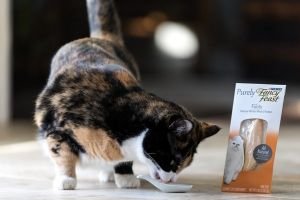 Purina Fancy Feast cat food review