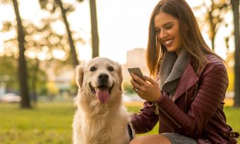 Woman with golden retriever dog texting in park