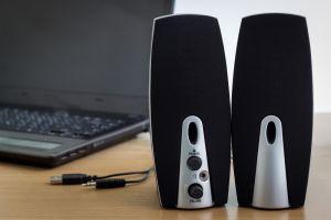 Plug-in computer speakers