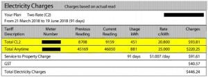Electricity Usage Charges example bill