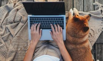 Top view of woman and dog with laptop