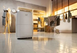 Best De'Longhi dehumidifier review