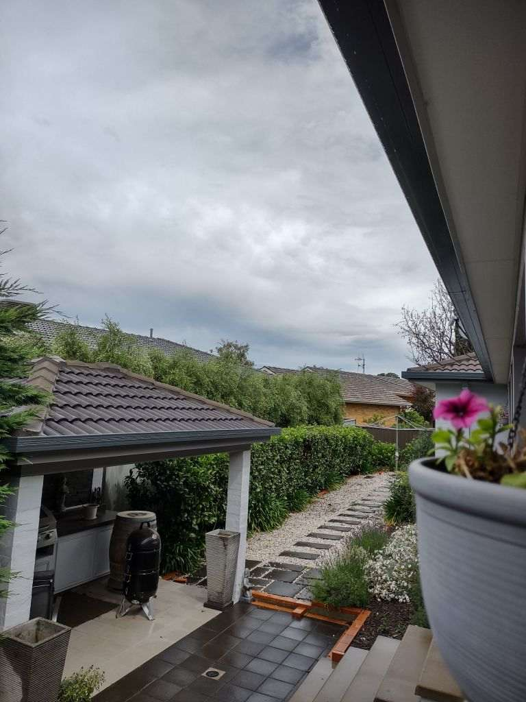 Backyard with hedges and storm clouds