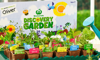 Woolworths Discovery Garden Returns