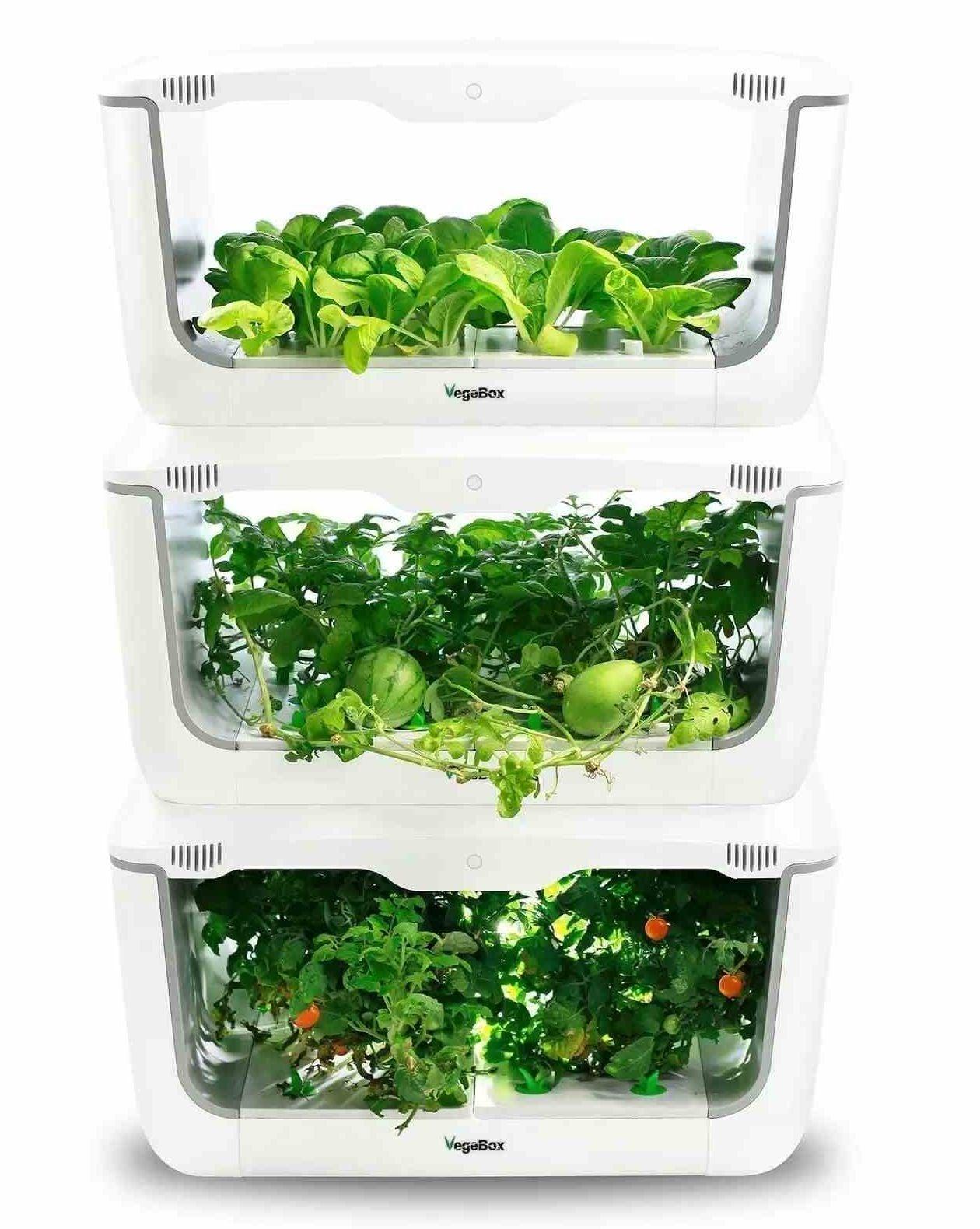 VegeBox indoor hydroponic garden