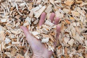 Pile of wood chips being assessed for quality