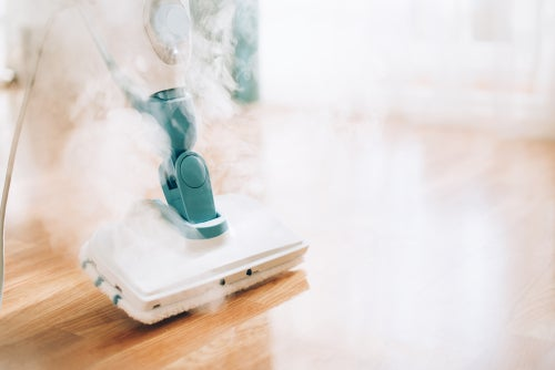 What is the best steam mop?