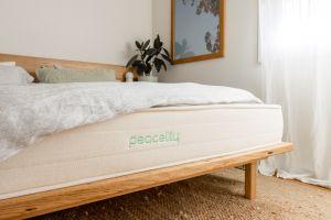 Should I buy Peacelily mattress