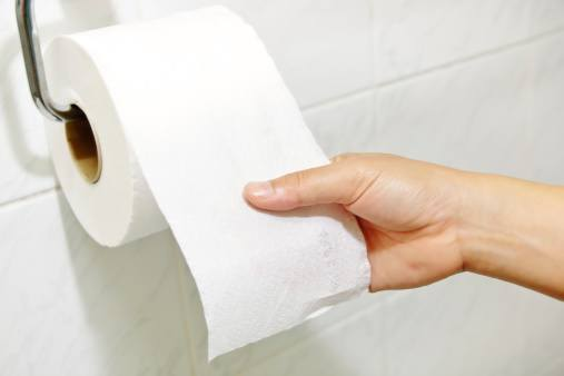 Image result for photo toilet paper